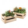 Декоративный ящик Ботаник 3