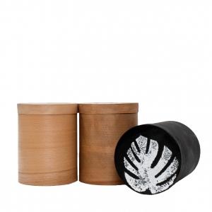 Коробка для зберігання Ботанік